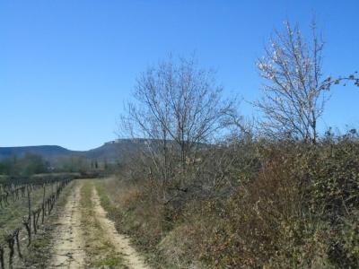 La Dent de Retz en Ardèche sur le plateau des Gras proche de la maison bleue
