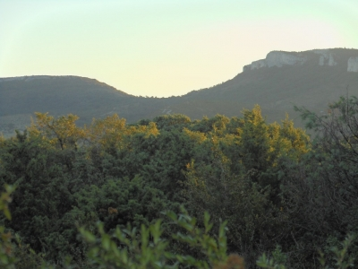 La dent de Retz sur le Plateau des Gras en Ardèche