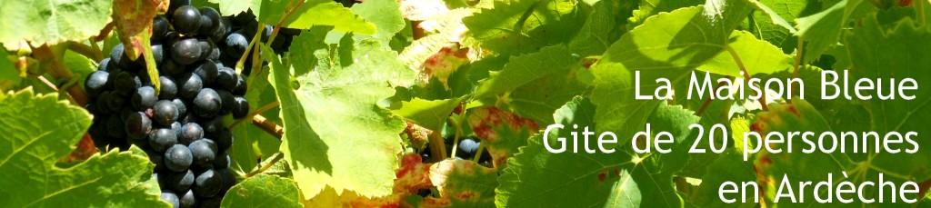 Balade vigneronne à la maison bleue, gîte de groupe en Ardèche, vins d'Ardèche entre lavande et garrigue.