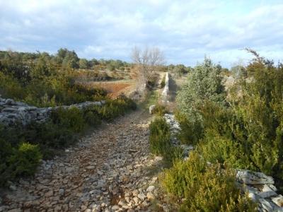 Chemin bordé de pierres sèches à Larnas