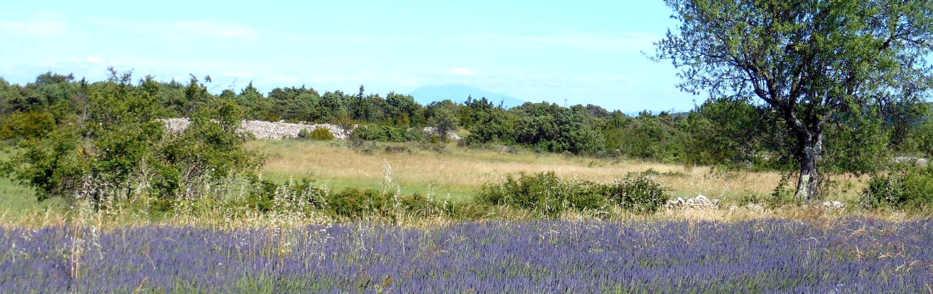 En Ardèche, un havre de paix