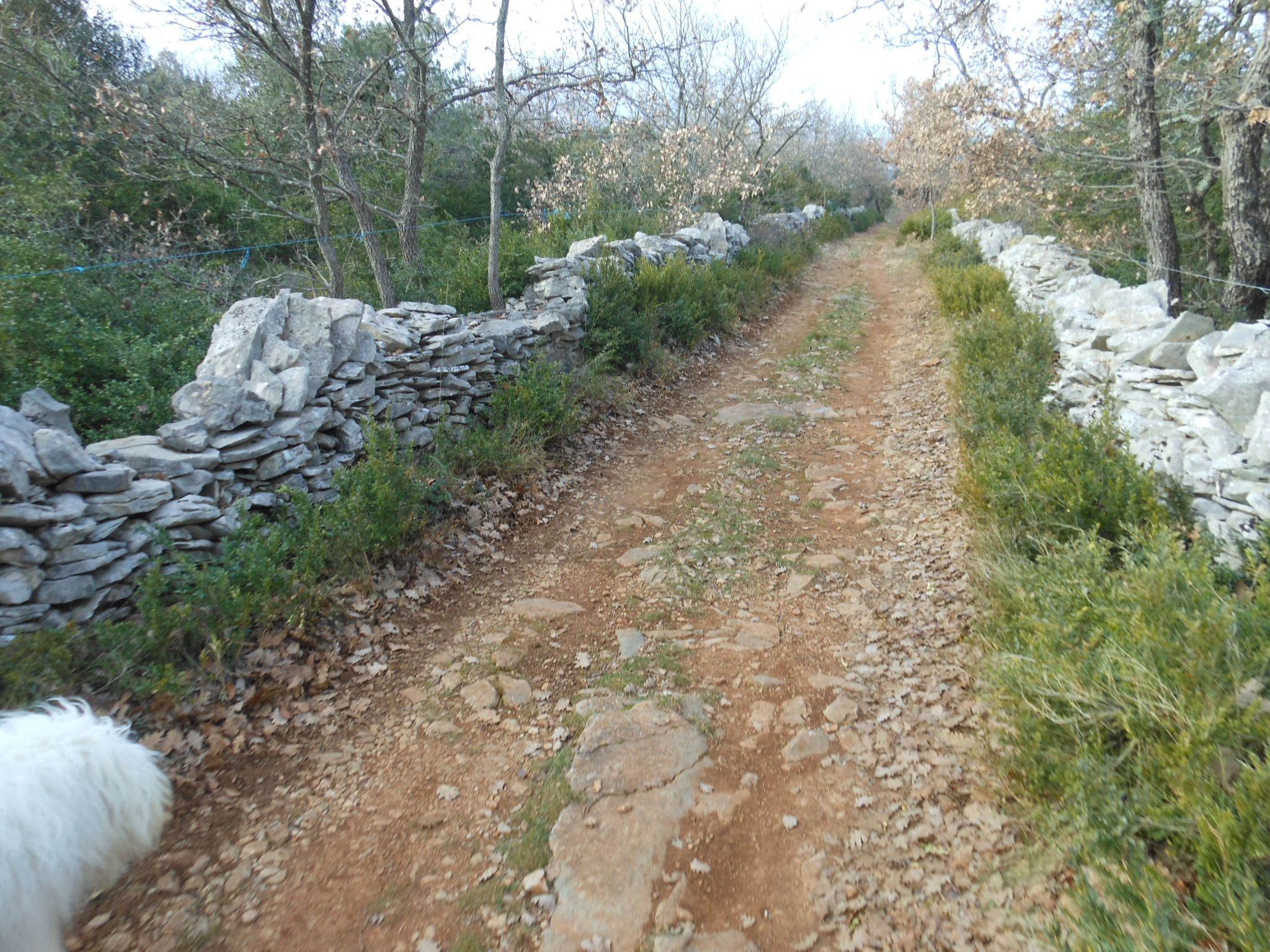 Chemin des pierres sèches sur la commune de Larnas.