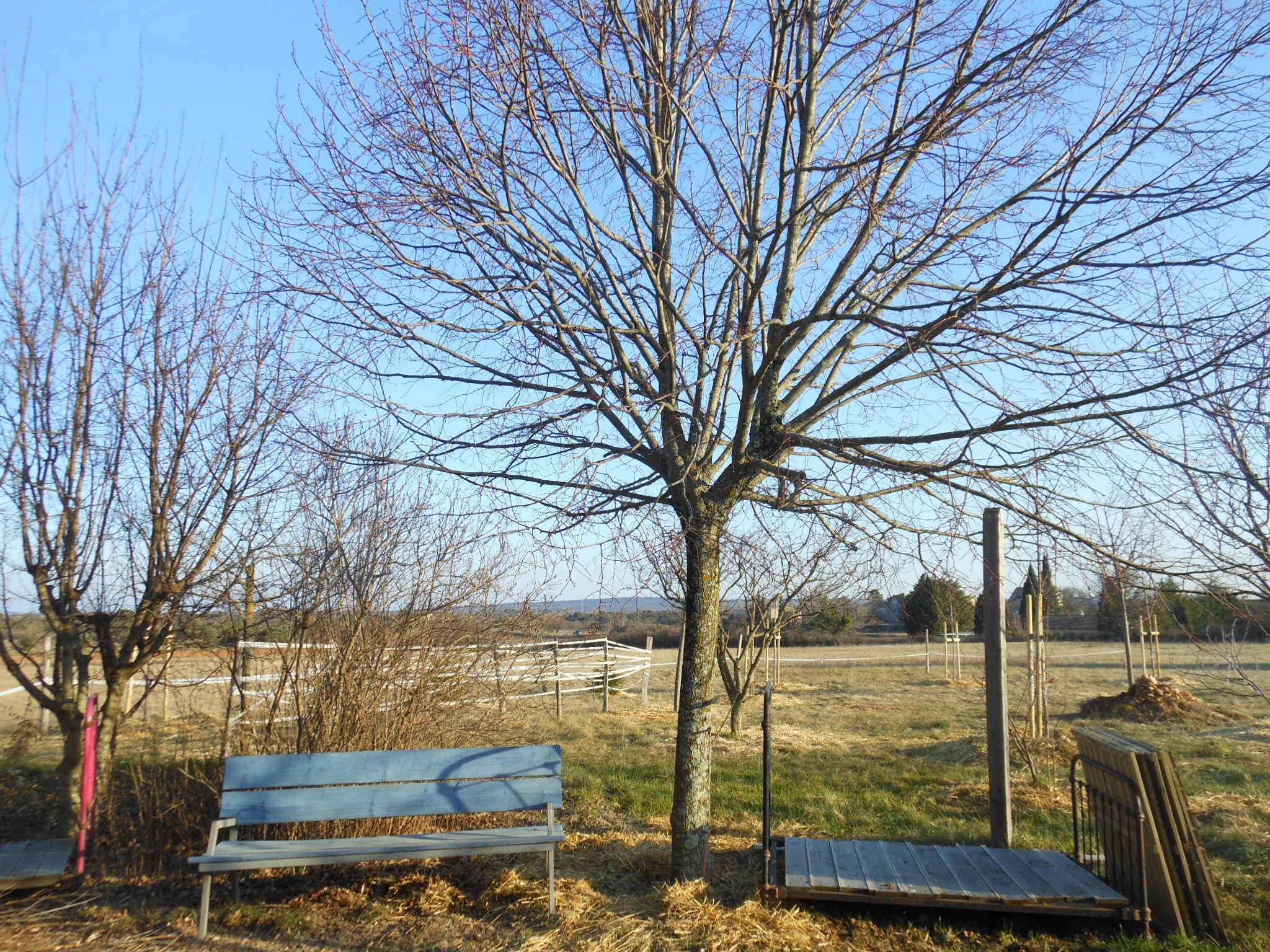 Ciel ardéchois et contemplation une fin de journée hivernale à la Maison Bleue